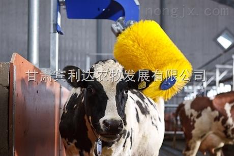 牛体刷质量牛体刷使用方便牛体刷价格优惠甘肃宾利达安装直销