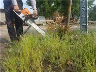 苗木移栽挖树机 汽油断根起树机汽油挖树机