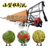 河南汽油辣椒专用收割机厂家 玉米秸秆割晒机