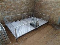 出售养猪设备仔猪育肥保育床 双体铸铁小猪床