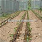 齐全湖南滴灌带全新材料生产 衡阳市膜下滴灌局部有效灌溉
