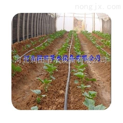 河北滴灌厂家直销滴灌带滴灌管节水灌溉