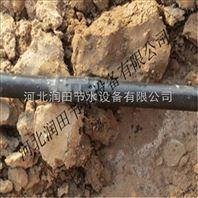 重庆市优质大棚滴灌设备
