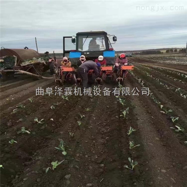 自走式蔬菜秧苗移栽机 农用牵引式起垄覆膜红薯移栽机