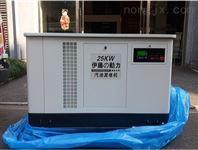 便携式25KW小型汽油发电机