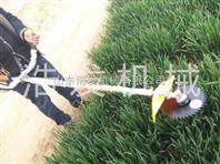 草坪汽油除草机 背负式割草机