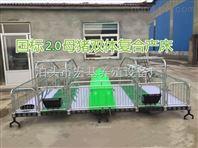 河北养猪设备厂家出售母猪产床 产保一体床