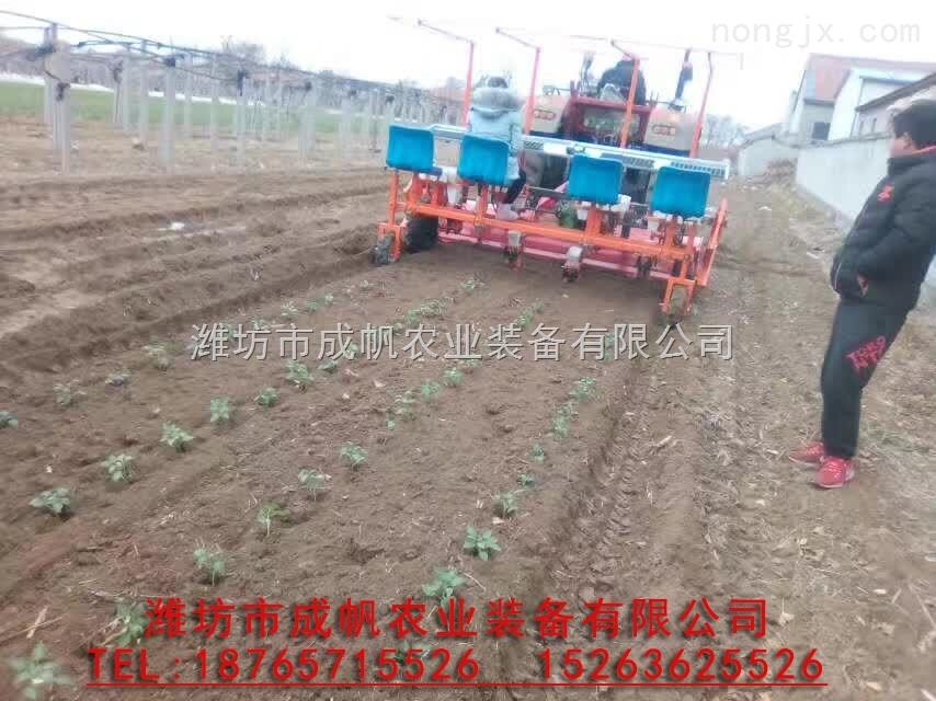 2017zui新型廠家直銷供應樹苗栽植機, 移栽機, 移植機械