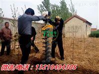 多种型号挖坑机 地钻挖坑机 园林植树挖坑机图片