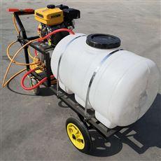 SL DYJ手推汽油7.5马力打药喷雾器