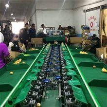 XGJ-SZ选浙江梨的机器哪里有卖 厂家在哪里