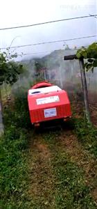 全自動風送噴霧機(田園管理機械)