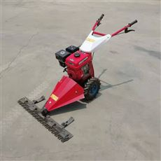 SL JCJ1.2米宽柴油果园剪草机