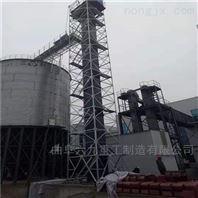 垂直板链斗式输送机 炉渣钢斗上料机 Lj1