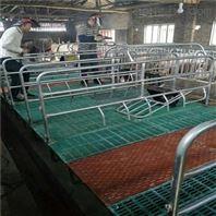 母供应热镀锌国标管材母猪产床 猪场保育床