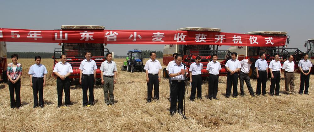 直击2015年山东省小麦收获开机仪式