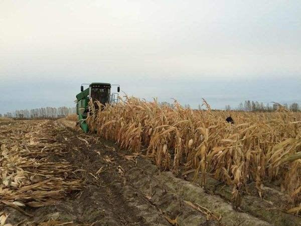 宜昌市农机化综合作业水平达到66.5%