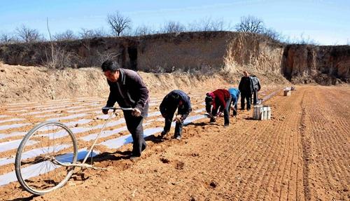 推进农业供给侧改革 春耕第一步至关重要