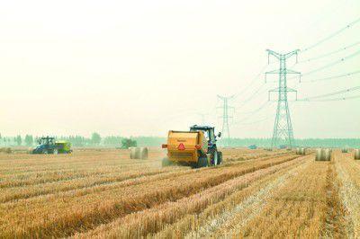 农业部副部长张桃林:加快秸秆资源化利用