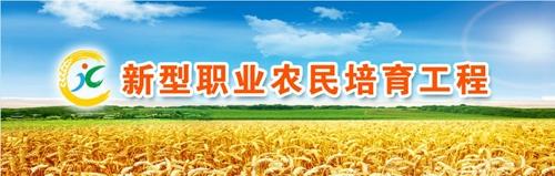 培育新型职业农民 农民发明家做表率