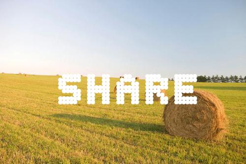 共享农机:农民需要的是服务 而非农机