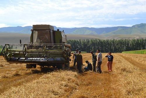全国农机安全生产大检查已进入实地督查和巩固提高阶段