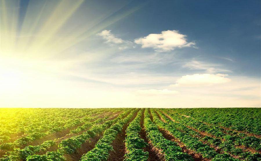 关于加快推进吉林省秋季农机作业补助项目工作的函