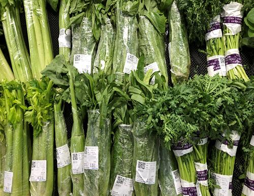 宁夏全面加强瓜菜种苗质量监管工作