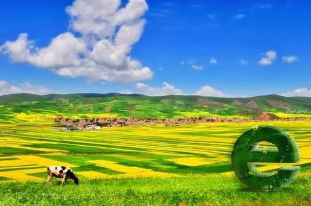 """科技创新推动""""互联网 农业""""模式新发展"""