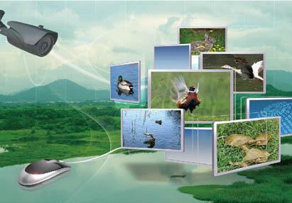 推进农业生态科技成果产业化,重点引进,吸收,创新和发展资源节约利用