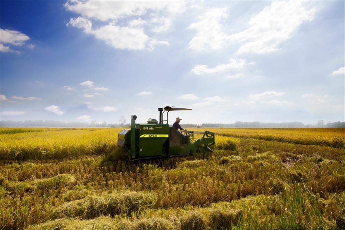 农业风景动态图