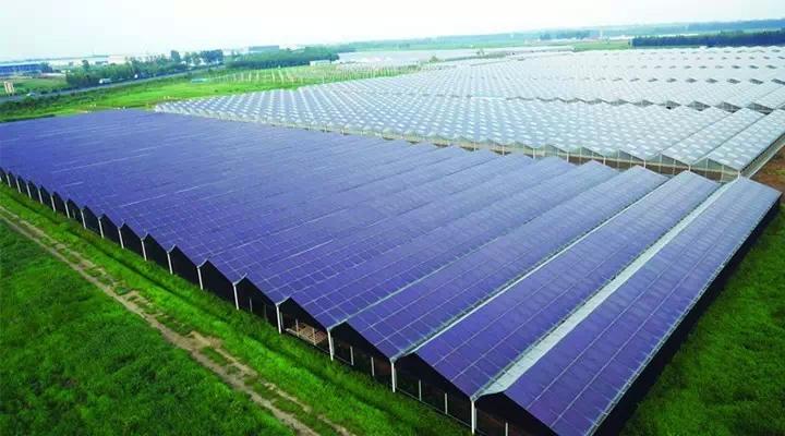 """光伏""""联姻""""农业,常见的是农业光伏温室大棚。农业光伏温室大棚,是集太阳能发电、智能温控、高科技种植为一体的温室大棚。屋顶的太阳能光伏发出的直流电,直接为农业温室补光,并支持棚内设备的政策运行,具备经济作物和光能发电的双重价值,又没有占用额外的土地资源。此外,我国人均可用耕地面积极少,且有55%的可用耕地为缺水旱地,水资源匮乏制约着我国农业的发展。光伏发电便能解决上述问题:1%的耕地采用光伏扬水技术能形成400GW的装机市场。而1GW装机的太阳能光伏扬水设备,可以满足500万-1"""