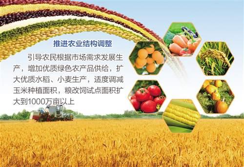 供给侧结构性改革与以往所提的农业结构调整有联系
